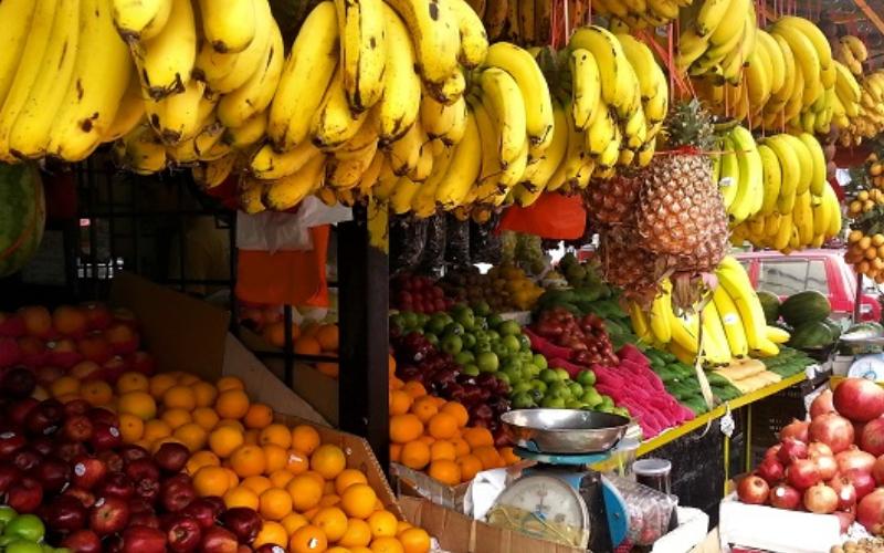 Malaysia Fruits